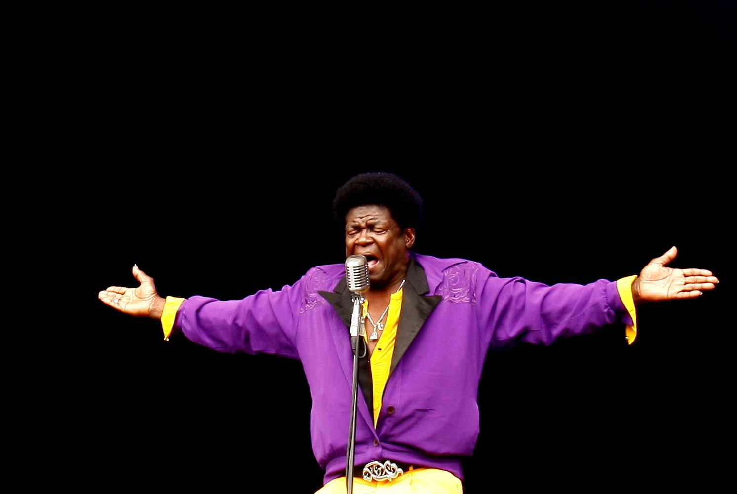 Charles Bradley Latitude best gigs of 2013