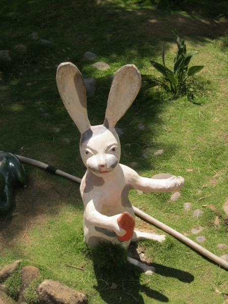 rabbit in dalat vietnam travel writing