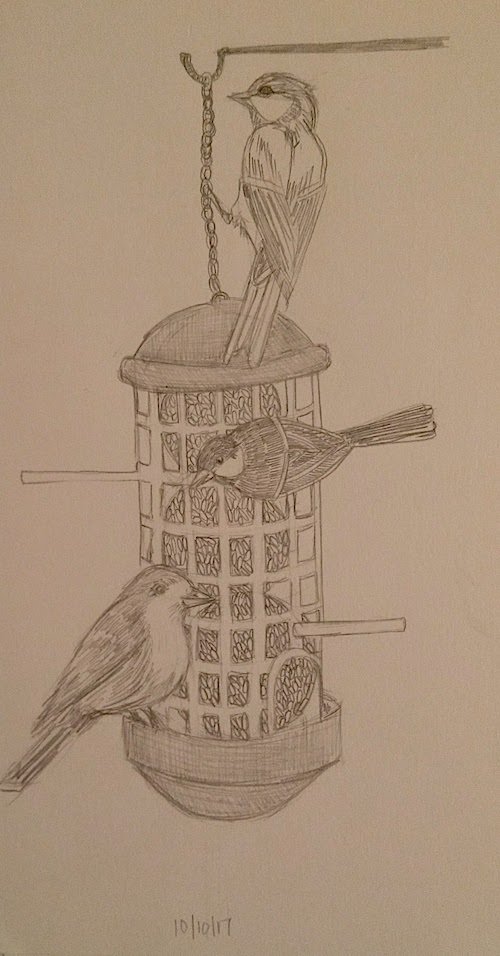 birds at feeder laura morgans inktober