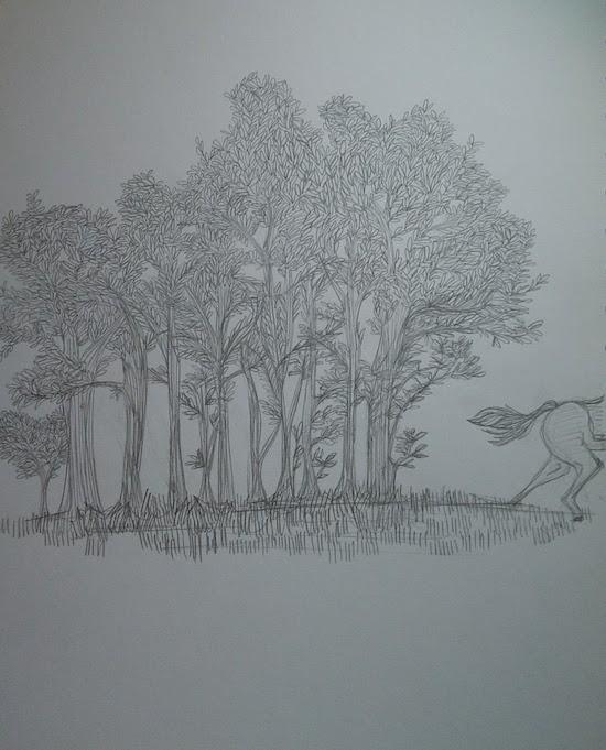 trees copse illustration laura morgans